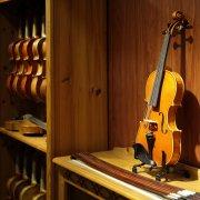 佳典提琴室內商攝